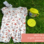 Wild Dill Store Review and Giveaway
