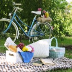 Planning an Eco-friendly Picnic, and the Best Picnic Gear