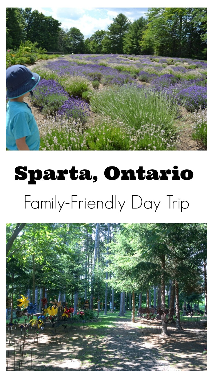Visiting Sparta, Ontario is a must-do for anyone in the area. It has the most beautiful lavender farm, fun gift shops and the most unique, hidden garden forest/store. It's an awesome place for families!