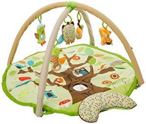Eco-friendly baby gear: eco-friendly bouncer chair, play mat, eco-friendly strollers and more