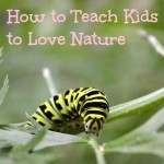 How to Teach Kids to Love Nature