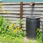 10 Ways to Save Water this Summer