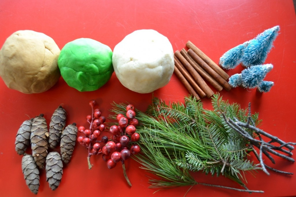 Winter Nature Play Dough Kit